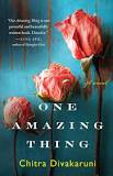 UIM's Community Book Read: One Amazing Thing
